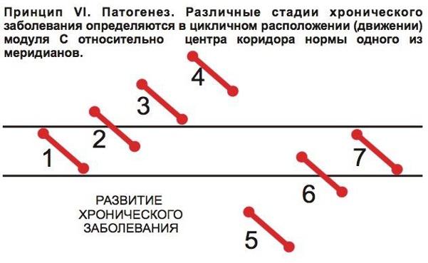 кузьменко3